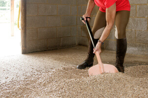 How to use Verdo Horse Bedding